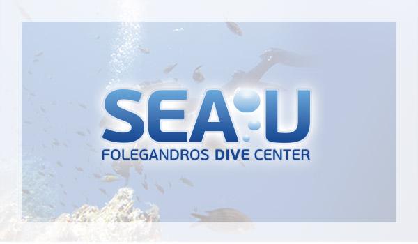 partners_seau