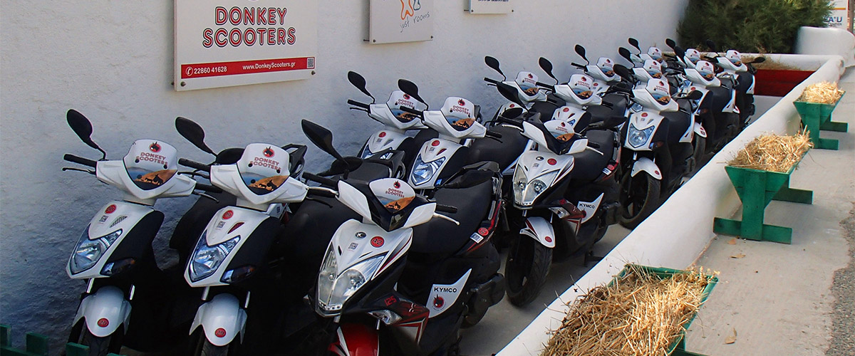 pavlos-x2-donkey-slider-01