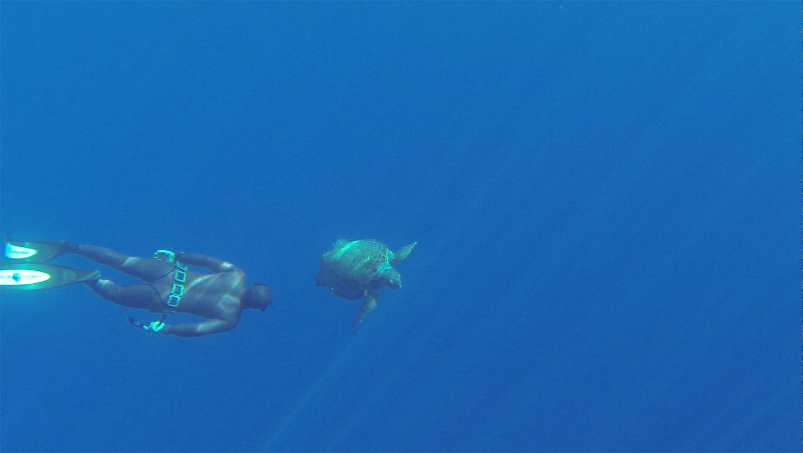 Pavlos x2 Diving